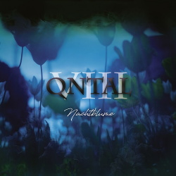 Qntal - VIII - Nachtblume (2018)