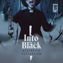 Aesthetic Perfection - Into the Black (2019)