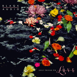 Blaqk Audio - Only Things We Love (2019)