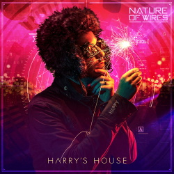Nature of Wires - Harry's House (Single) (2019)