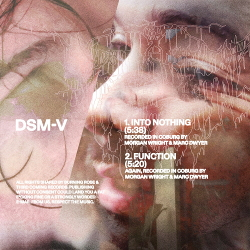 DSM-V - Into Nothing/Function (EP) (2020)