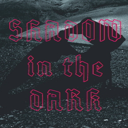 NNHMN - Shadow In The Dark (Limited Edition) (2020)