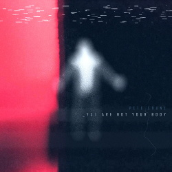 Pete Crane - You Are Not Your Body (Single) (2020)