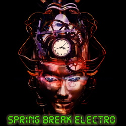 VA - Spring Break Electro (2020)