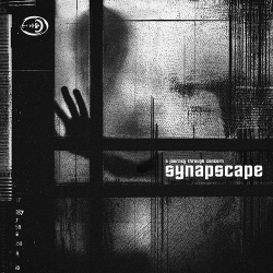 Synapscape - A Journey Through Concern (2020)